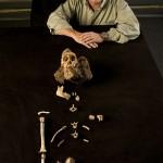 Nekompletan fosil Australopiteka Sedibe